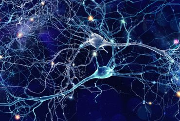 Conceptual,Illustration,Of,Neuron,Cells,With,Glowing,Link,Knots,In